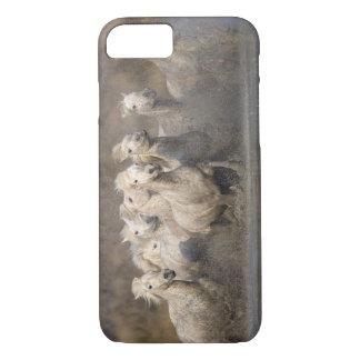 France, Provence. White Camargue horses running iPhone 7 Case