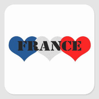 France Square Sticker