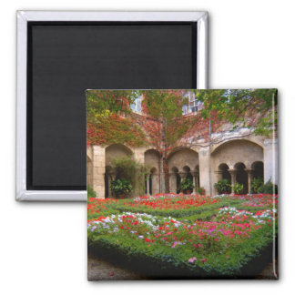 France, St. Remy de Provence, cloisters at 2 2 Inch Square Magnet