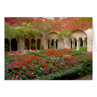 France, St. Remy de Provence, cloisters at 3 Card