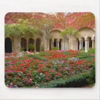 France, St. Remy de Provence, cloisters at 3 Mouse Pad