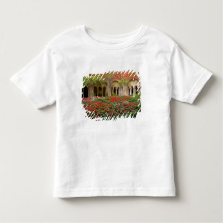 France, St. Remy de Provence, cloisters at 3 Toddler T-shirt
