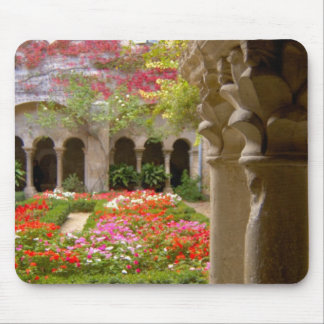 France, St. Remy de Provence, cloisters at Mouse Pad