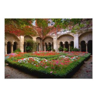 France, St. Remy de Provence, cloisters at Photo Art