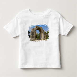 France, St. Remy de Provence, Triumphal Arch T Shirt