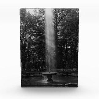 France Versailles Palace grove of Domes 1970 Award