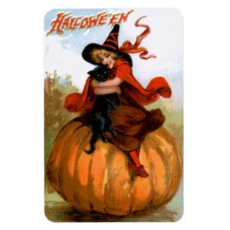 Frances Brundage: Halloween Witch Rectangular Photo Magnet