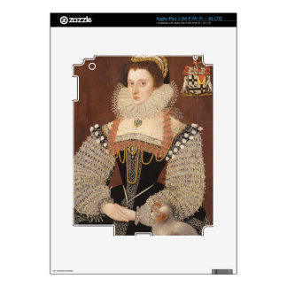 Frances Clinton, Lady Chandos (1552-1623) 1579 (oi Skins For iPad 3
