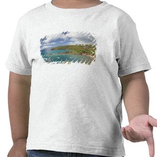FRANCÉS las ANTILLAS (FWI), Guadaloupe, Basse, Camiseta