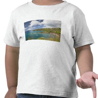 FRANCÉS las ANTILLAS (FWI), Guadaloupe, Basse, Camisetas