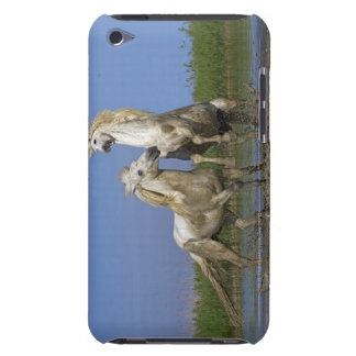 Francia, Bouches du Rhone, parque regional natural Cubierta Para iPod De Barely There
