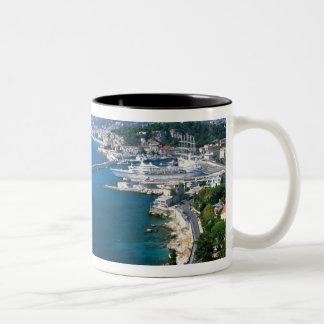 Francia, Niza, aérea vista del puerto Taza De Dos Tonos
