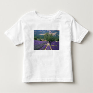 Francia, PACA, Alpes de la Alta Provenza, 3 Playera De Bebé