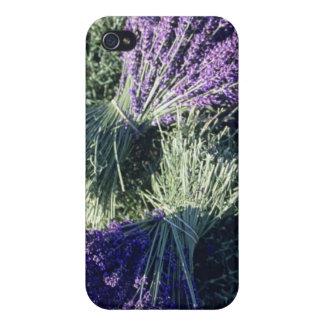 Francia, PACA, Alpes de la Alta Provenza, manojos iPhone 4/4S Funda
