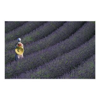 Francia, PACA, Alpes de la Alta Provenza, mujer Foto
