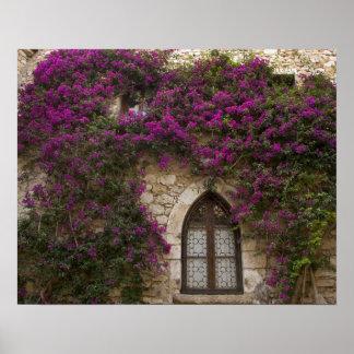Francia, Provence, Eze. Rosa brillante Impresiones