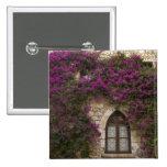 Francia, Provence, Eze. Rosa brillante Pin Cuadrado