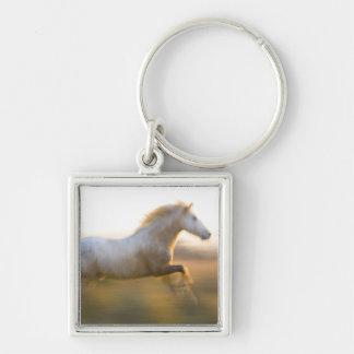 Francia, Provence. Funcionamiento blanco del cabal Llavero Cuadrado Plateado