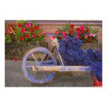 Francia, Provence, Sault. Carro de madera viejo co Impresión Fotográfica