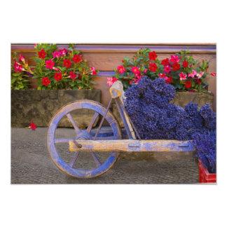 Francia, Provence, Sault. Carro de madera viejo co Fotografia