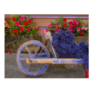 Francia, Provence, Sault. Carro de madera viejo co Postal