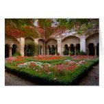 Francia, St. Remy de Provence, claustros en 2 Tarjeta De Felicitación