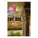 Francia, St. Remy de Provence, claustros en 3 Impresión Fotográfica