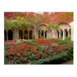 Francia, St. Remy de Provence, claustros en 3 Postal