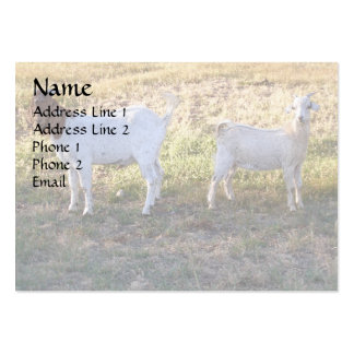 Franco and Friend Large Business Cards (Pack Of 100)