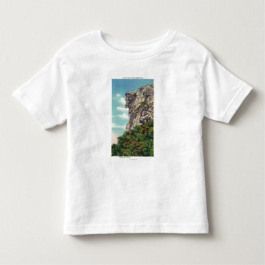 Franconia Notch State Park Toddler T-shirt