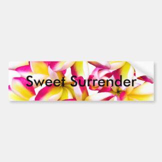 Frangipane Temple flower Bumper Stickers