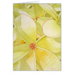 Frangipani amarillo limón tarjeta