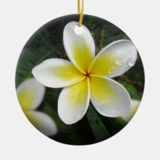 Frangipani And Raindrops Christmas Ornaments