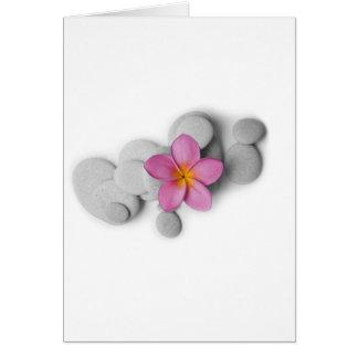 Frangipani Calm Greeting Cards