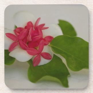 Frangipani flower arrangement beverage coaster