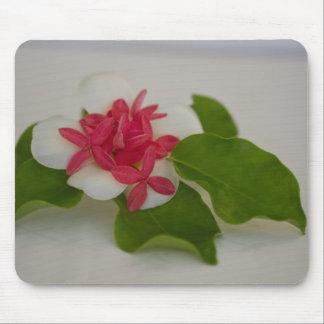Frangipani flower arrangement mouse pad