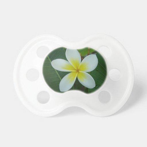 Frangipani Flower BooginHead Pacifier