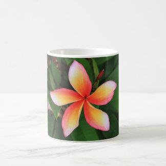 Frangipani flower coffee mug