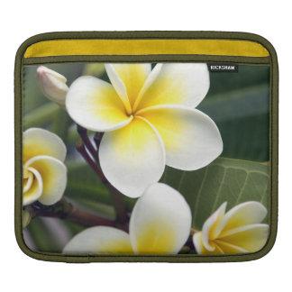 Frangipani flower Cook Islands Sleeves For iPads
