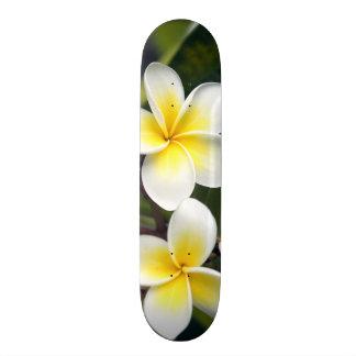 Frangipani flower Cook Islands Skateboard Deck