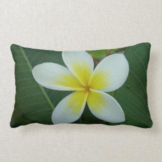 Frangipani Flower Pillow