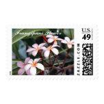 Frangipani Flower  Postage