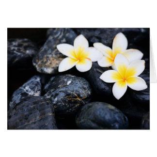 Frangipani flowers card