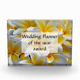 Frangipani flowers event planner award