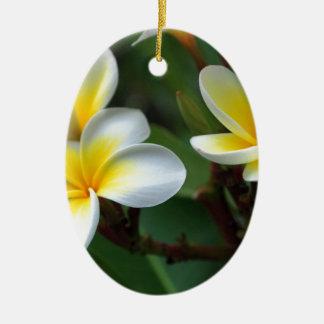 Frangipani_flowers.jpg Ceramic Ornament
