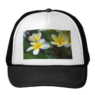 Frangipani_flowers.jpg Trucker Hat
