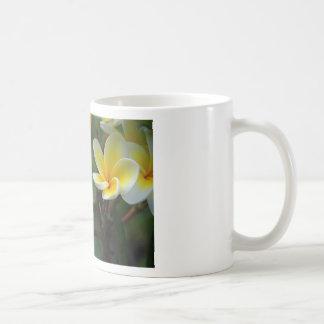 Frangipani_flowers.jpg Classic White Coffee Mug