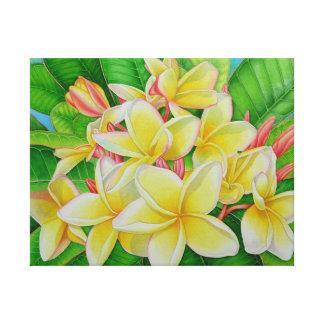 Frangipani hawaiano impresión en lienzo
