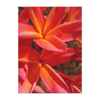 Frangipani hawaiano impresion en lona