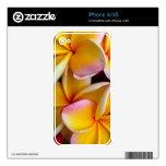 Frangipani hawaiano skin para el iPhone 4
